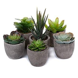 T4U Artificial Plantas Suculentas Decorativa de Plástico Colección