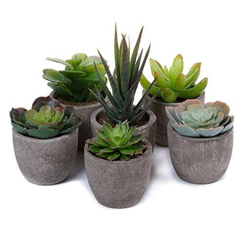 T4U 6er Set Mini Künstliche Sukkulenten Dekorative Kunstpflanze Bonsai mit Topf - Sammlung 1