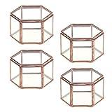 P Prettyia 4pcs Hexagonal Form Geometrisches Glasterrarium Sukkulente Pflanzgefäß Gewächshaus Tischdeko
