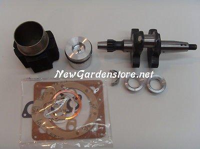 Kit revisione cilindro pistone albero motore DIESEL LOMBARDINI 6LD360 KIT6BCN1 - Motore Diesel A Gomito