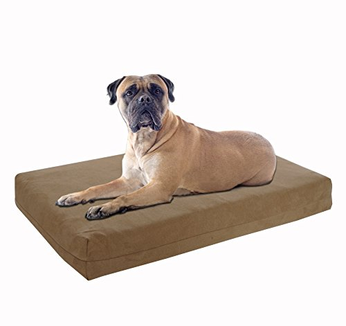 Beige Tan Khaki (Pet stützsysteme Hund Betten-Orthopädische Memory Foam-100% Made in USA-Luxus Große Rassen Waschbar Pet Bett, Gel Memory Foam XX-Large, 55