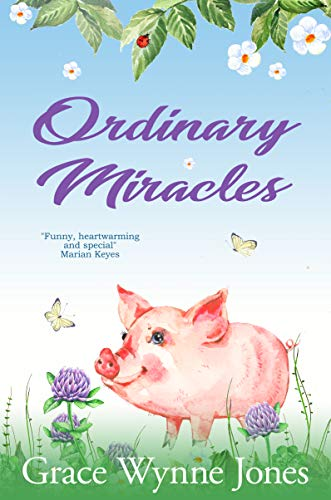 Télécharger Ordinary Miracles A Funny Moving Novel About