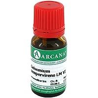 GELSEMIUM SEMPERVIRENS LM 06 Dilution 10 ml preisvergleich bei billige-tabletten.eu