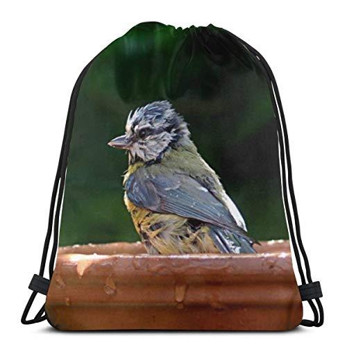Cap pillow Blue Tit Bird Blue Tit Blur Custom Drawstring Shoulder Bags Gym Bag Travel Backpack Lightweight Gym for Man Women 16.9