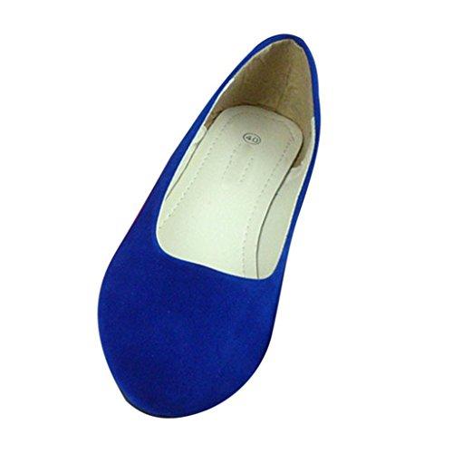 Minetom Pantofole Stile Semplice Scarpe Comode da Donne FlatsPompe ( Blu Reale EU 39 )