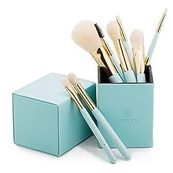 Amoore Make Up Brushes 8 Pcs Makeup Brushes Set With Holder Make Up Brush With Case