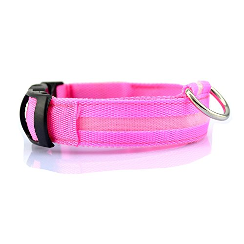 TQP-CK Collar para Perro Luz LED Seguridad Flashing Safety Dog Pet Collar Tag