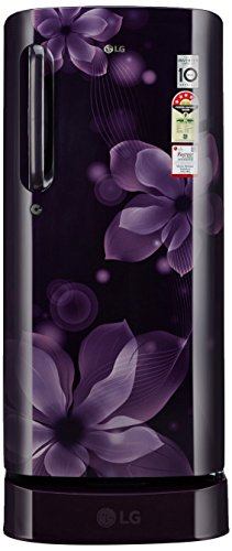 Lg 190 L 4 Star Direct-cool Single Door Refrigerator (gl-d201apox.apozebn, Purple Orchid)