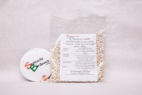 250 g Buschbohne Maja Bohnensamen Bohnensaat fadenlos frühe Sorte hoher Ertrag Gemüsesamen Gartenbohne