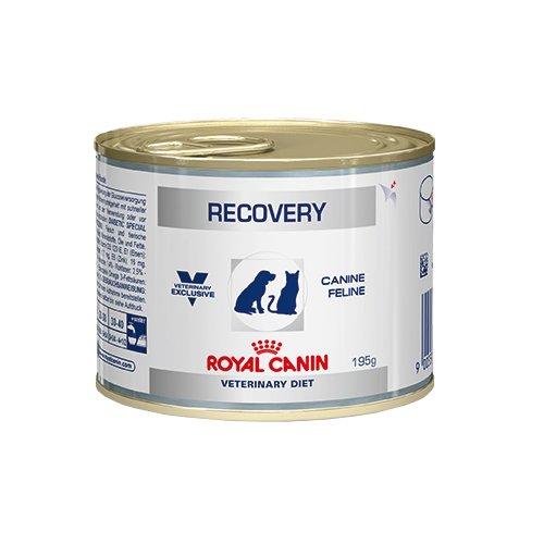 Royal Canin Veterinary Diet Recovery Nahrung für Hunde/Katzen