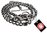 #6: Pawzone Stainless Steel Training Chain/Leash for Dogs (XL)(63.5inch x 1cm x 0.3mm)