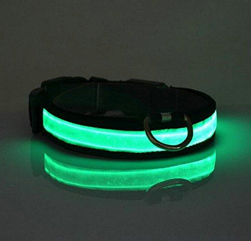 LED Halsband Leuchthalsband S/M/L/XL Hundehalsband Sicherheitshalsband Nylon Da.Wa - 5