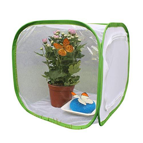 Hinmay Pflanzen-Gewächshaus, transparent, wasserfest, Anzuchtraum, Anti-Moskito-Box, Schmetterling, Haustierkäfig, Gewächshaus