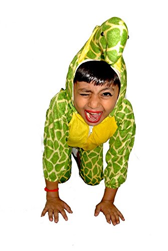 SBD Tortoise Fancy Dress Costume/Theme Costumes Kids For Competitions/Shows