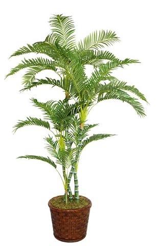 Laura Ashley 77 Inch Tall Palm Tree in 17 Inch Fiberstone Planter