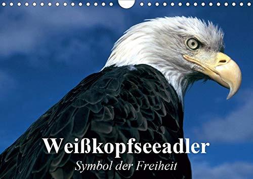 Weißkopfseeadler. Symbol der Freiheit (Wandkalender 2020 DIN A4 quer) -