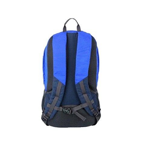 LF&F Backpack Hochwertiges Nylon 25-30L KapazitäT Stilvolle Casual Student Tasche Wasserdicht Und Langlebig Outdoor Sport Reise Rucksack Bergsteigen Tasche Mehrzweck Daypacks A