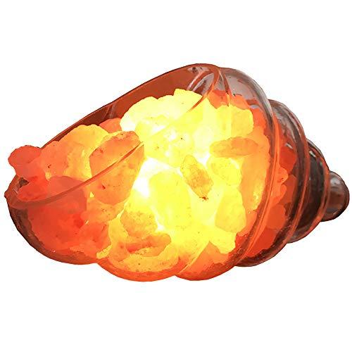 WNZL Himalaya-Salz-Lampe, Shell kreative Lampe Salt Rock Lampen, Meersalzkristall-Nachtlicht mit Dimmer-Schalter, verwendet für Schreibtisch, Schlafzimmer, Wohnzimmer und Geschenk