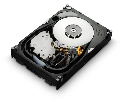 Hitachi Fibre Channel (HGST Ultrastar HUS156045VLF400 15K600 450GB Fibre Channel 4Gb/s 64MB 3,5' HDD)
