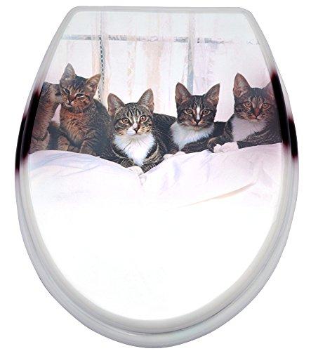 Abattant wc chat abattant wc - Abattant wc noir et blanc ...