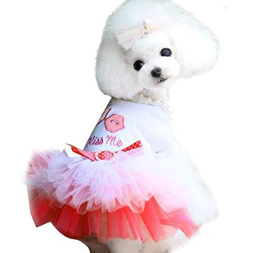 ZHONGCHENYI Pet Supplies Haustier Lippen Garn Hund Haustier Kleid Kleid Welpe Welpe Katze Spitze Rock Prinzessin Pettiskirt Kleid Kleidung Niedlichen Welpen, Xs