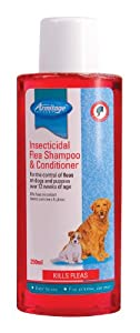 Armitage Dog Shampoo Insecticidal Flea Shampoo and Conditioner, 250ml by Armitages