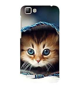 Cute Kitten 3D Hard Polycarbonate Designer Back Case Cover for vivo V1 Max