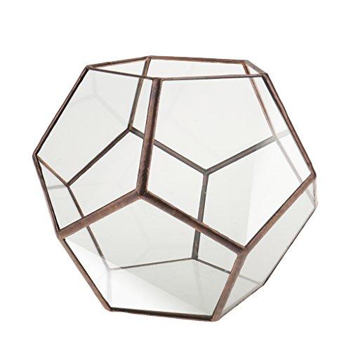 Mini Glasterrarium Geometrisches Glas Sukkulente Pflanzgefäß Haus Dekoration - 15 x 15 x 15cm -