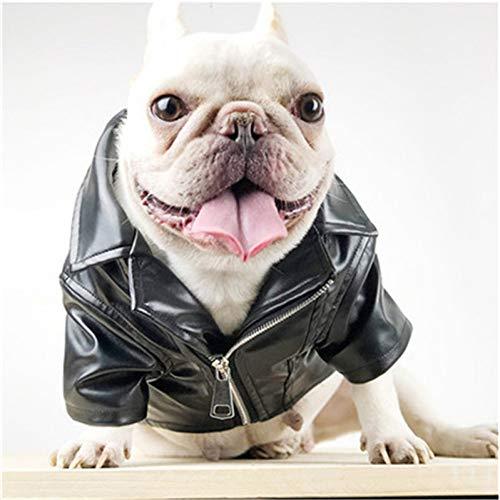 FGDSSE Abbigliamento per Cani da Compagnia Giacca da Moto in Pelle Nera Giacca da Moto Autunno e Inverno Abbigliamento per Cani Impermeabile