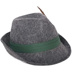 Sombrero de caza con pluma en gris sobrero tirolés para fiesta, fiesta de la cerveza sombrero bávaro