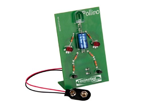 Bausatz Pollino