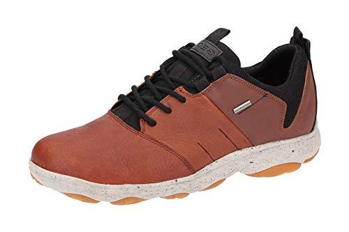 Geox u nebula 4 x 4 b abx a, scarpe da ginnastica basse uomo, marrone (browncotto/cognac c6g6n), 46 eu