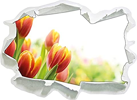 Colorful tulips meadow, paper 3D wall sticker size: 62x45 cm
