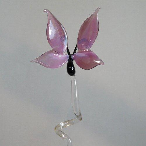 Tige d'Orchidées Porte-orchidées avec Schmetterling Batonnets pour orchidées