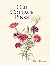 Old Cottage Pinks