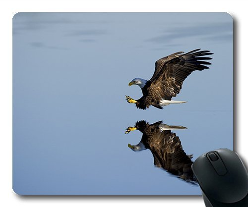 (genaue - kante - mousepad) tiere Geflügel Schnabel Vogel Adler fliegen Outdoor - Flug Gaming - Maus mit der Mac - oder der computer mouse pad. -