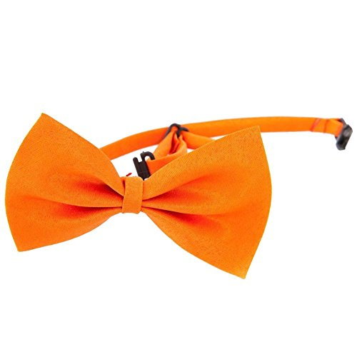 Orange Dog Bow Tie Neck Acccessory Décor Halsketten-Kragen Puppy Leuchtende Farbe Pet Bow