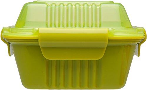Aladin 451029 Boîte à Repas Vert 0,35 L