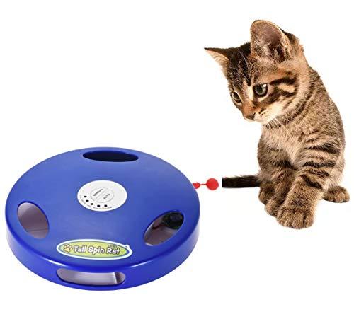 Juguete para gatos de todas las edades