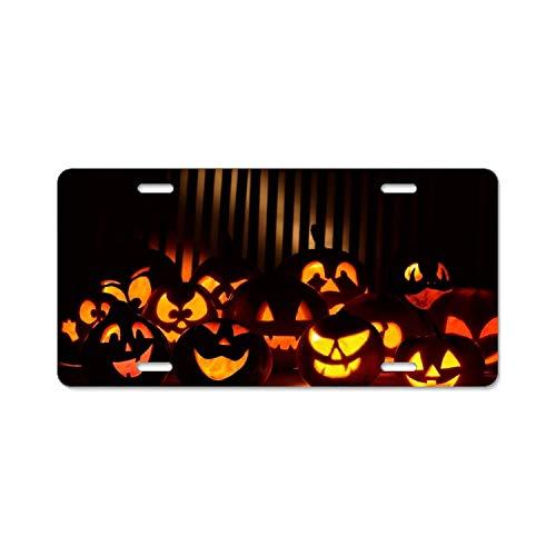 mchmcgm Halloween Boo Standard Aluminium Oxide Nummernschilder Frame