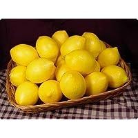 fendii 12pcs Artificiale Limoni in plastica Frutta Casa Partito Decor Display