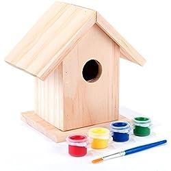 Greenfingers - Kit de casa de madera para pájaros y pinturas