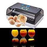 Ksruee Brutmaschine Vollautomatisch Hühner Eier Brutgerät, mit Effizienter LED...