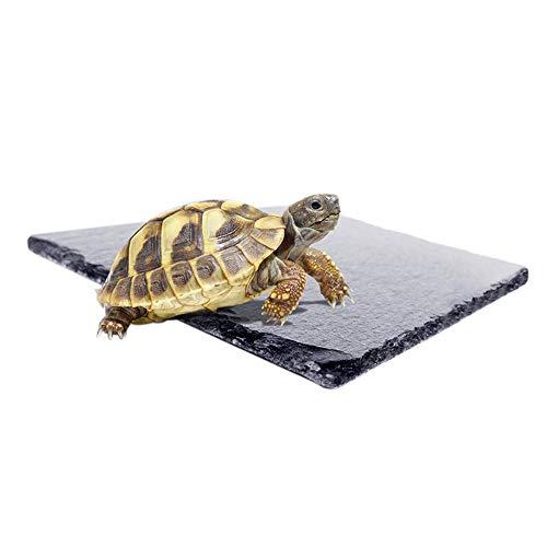 Amakunft Natural Reptile Habitat Rocks, Schildkröten-Plattform, Zubehör für Amphibien-Habitat, L(1-Pack) -