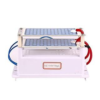 DSstyles 110V Portable Ceramic Ozonizer Purifier Honeycomb Alternating Current Ozone Generator for AC110V10GC(without plug)