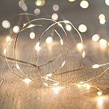 Catena LED USB Stringa Luminosa Microled Decorazione Di Natale To Invisibile Filo Argento Per Albero Di Natale Presepe Addobbi Natalizi E Decorare La Casa (50 Miniled Luce Calda)