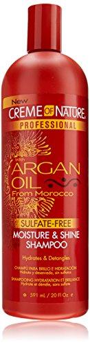 Shampooing hydratation et brillance pro à l'huile d'argan - Sans sulfate - Hydrate et démêle - 590 ml