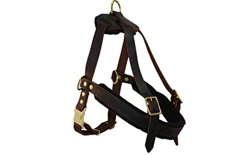 Leather Dog Harness, Small, Brown (Aspen), 100% Genuine English Bridle Leather, For Breeds 30-50 lbs. Chest: 26-31 in, Neck:18-24 in, Chest