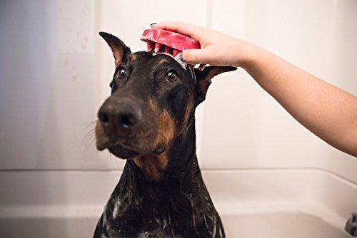 Paulchen Massagebürste Zoom-Groom 29020, Boysenberry - 5