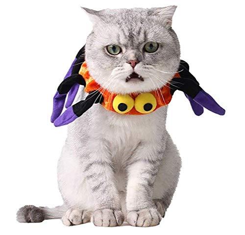 DAN Katzenkostüm, Halloween-Haustier-Kostüme Augen-Spinnen ()